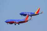 サンフランシスコ国際空港 - San Francisco International Airport [SFO/KSFO]で撮影されたサウスウェスト航空 - Southwest Airlines [WN/SWA]の航空機写真