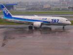 noinaさんが、福岡空港で撮影した全日空 787-8 Dreamlinerの航空フォト(写真)