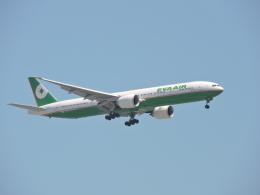 わたくんさんが、福岡空港で撮影したエバー航空 777-35E/ERの航空フォト(写真)