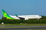 パンダさんが、成田国際空港で撮影した春秋航空日本 737-86Nの航空フォト(写真)