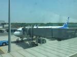 hgenさんが、瀋陽桃仙国際空港で撮影した全日空 767-381/ERの航空フォト(写真)