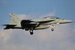 マリオ先輩さんが、厚木飛行場で撮影したアメリカ海軍 F/A-18F Super Hornetの航空フォト(写真)
