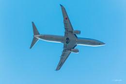 NaoAkimotoさんが、旭川空港で撮影した全日空 737-881の航空フォト(飛行機 写真・画像)