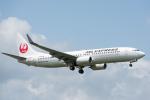 いっち〜@RJFMさんが、宮崎空港で撮影した日本航空 737-846の航空フォト(写真)