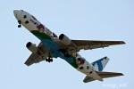 wing_oitさんが、大分空港で撮影した全日空 767-381の航空フォト(飛行機 写真・画像)