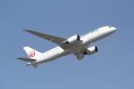 ANA744Foreverさんが、成田国際空港で撮影した日本航空 787-8 Dreamlinerの航空フォト(写真)