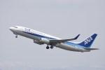 カシオペアさんが、新千歳空港で撮影した全日空 737-881の航空フォト(写真)