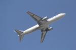 ANA744Foreverさんが、成田国際空港で撮影した全日空 767-381/ER(BCF)の航空フォト(写真)