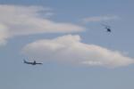 ほっくんさんが、東京ヘリポートで撮影した日本フライトセーフティ 206B JetRanger IIの航空フォト(写真)