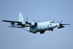 tsubasa0624さんが、厚木飛行場で撮影した航空自衛隊 C-130H Herculesの航空フォト(写真)