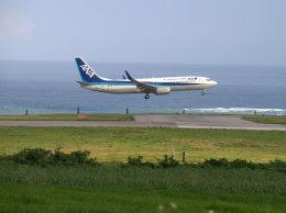 Mame @ TYOさんが、新石垣空港で撮影した全日空 737-881の航空フォト(飛行機 写真・画像)
