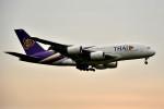 tsubasa0624さんが、成田国際空港で撮影したタイ国際航空 A380-841の航空フォト(写真)
