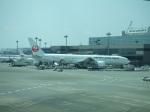 シャチさんが、成田国際空港で撮影した日本航空 777-346/ERの航空フォト(写真)