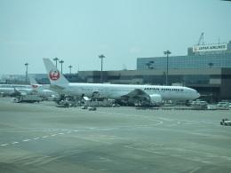 シャチさんが、成田国際空港で撮影した日本航空 777-346/ERの航空フォト(飛行機 写真・画像)