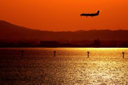 KENTARO (LOCAL)さんが、出雲空港で撮影した日本エアコミューターの航空フォト(写真)