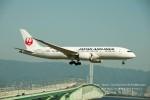かみきりむしさんが、関西国際空港で撮影した日本航空 787-8 Dreamlinerの航空フォト(写真)