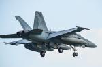 パンダさんが、厚木飛行場で撮影したアメリカ海軍 F/A-18A Hornetの航空フォト(写真)