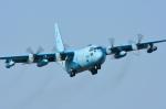 パンダさんが、厚木飛行場で撮影した航空自衛隊 C-130H Herculesの航空フォト(飛行機 写真・画像)