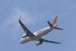 Fly Yokotayaさんが、成田国際空港で撮影したタイガーエア台湾 A320-232の航空フォト(写真)