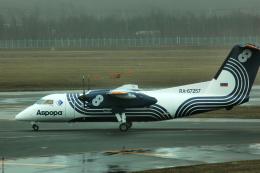 なまくら はげるさんが、新千歳空港で撮影したオーロラ DHC-8-200Q Dash 8の航空フォト(写真)