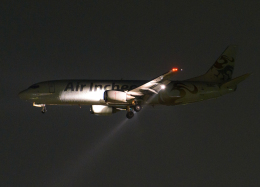 goldengoldsさんが、成田国際空港で撮影したエア・インチョン 737-4Y0/SFの航空フォト(飛行機 写真・画像)