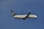 kumagorouさんが、那覇空港で撮影した全日空 737-881の航空フォト(写真)