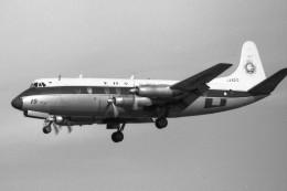 apphgさんが、名古屋飛行場で撮影した全日空 828 Viscountの航空フォト(飛行機 写真・画像)