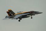 うめやしきさんが、厚木飛行場で撮影したアメリカ海軍 F/A-18E Super Hornetの航空フォト(写真)