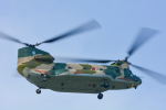 パンダさんが、茨城空港で撮影した航空自衛隊 CH-47J/LRの航空フォト(写真)