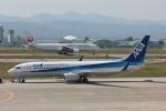 まぁぼーさんが、小松空港で撮影した全日空 737-881の航空フォト(飛行機 写真・画像)