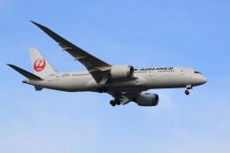 ギ―ピロさんが、羽田空港で撮影した日本航空 787-8 Dreamlinerの航空フォト(飛行機 写真・画像)