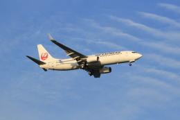 ギ―ピロさんが、羽田空港で撮影したJALエクスプレス 737-846の航空フォト(飛行機 写真・画像)