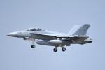 tsubasa0624さんが、三沢飛行場で撮影したアメリカ海軍 EA-18G Growlerの航空フォト(飛行機 写真・画像)