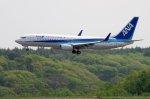 kitayocchiさんが、新千歳空港で撮影した全日空 737-881の航空フォト(写真)