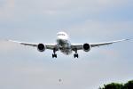 tsubasa0624さんが、伊丹空港で撮影した全日空 787-8 Dreamlinerの航空フォト(飛行機 写真・画像)