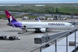 tsubasa0624さんが、仙台空港で撮影したハワイアン航空 767-3CB/ERの航空フォト(写真)