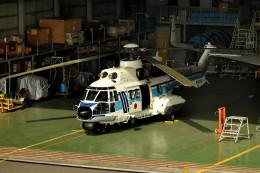 tsubasa0624さんが、羽田空港で撮影した海上保安庁 AS332L1 Super Pumaの航空フォト(飛行機 写真・画像)