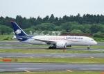じーく。さんが、成田国際空港で撮影したアエロメヒコ航空 787-8 Dreamlinerの航空フォト(写真)