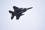 yagiporonさんが、静浜飛行場で撮影した航空自衛隊の航空フォト(写真)