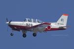 Scotchさんが、岐阜基地で撮影した航空自衛隊 T-7の航空フォト(写真)