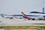 あぽやんさんが、関西国際空港で撮影したアシアナ航空 A380-841の航空フォト(写真)