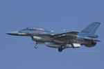 Scotchさんが、岐阜基地で撮影した航空自衛隊 F-2Bの航空フォト(写真)