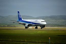Northwing555さんが、稚内空港で撮影した全日空 A320-211の航空フォト(飛行機 写真・画像)