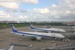 えんどうまめさんが、福岡空港で撮影した全日空 777-381の航空フォト(写真)