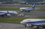 えんどうまめさんが、福岡空港で撮影した全日空 737-781の航空フォト(写真)