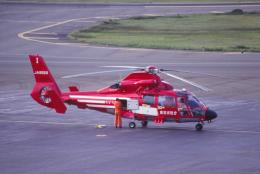 kumagorouさんが、仙台空港で撮影した東京消防庁航空隊 SA365N Dauphin 2の航空フォト(写真)