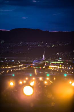 quamen88さんが、伊丹空港で撮影した全日空 - All Nippon Airways [NH/ANA]の航空フォト(飛行機 写真・画像)