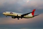 しゅあさんが、伊丹空港で撮影したJALエクスプレス 737-846の航空フォト(飛行機 写真・画像)