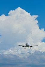 しゅあさんが、伊丹空港で撮影した全日空 A320-211の航空フォト(飛行機 写真・画像)