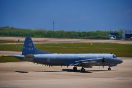 T.Sazenさんが、函館空港で撮影したカナダ軍 P-3 Orionの航空フォト(飛行機 写真・画像)